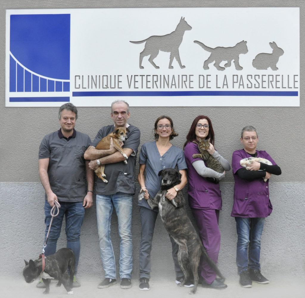 Clinique vétérinaire passerelle prise rdv givors grigny chien chat véto opération consultation