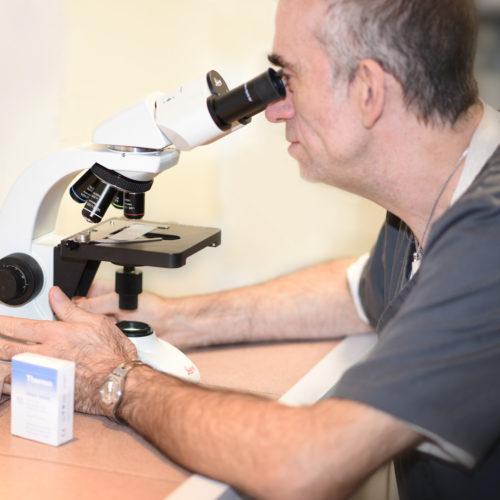vétérinaire véto grigny givors chasse urgence animaux animal docteur echo échographie laboratoire