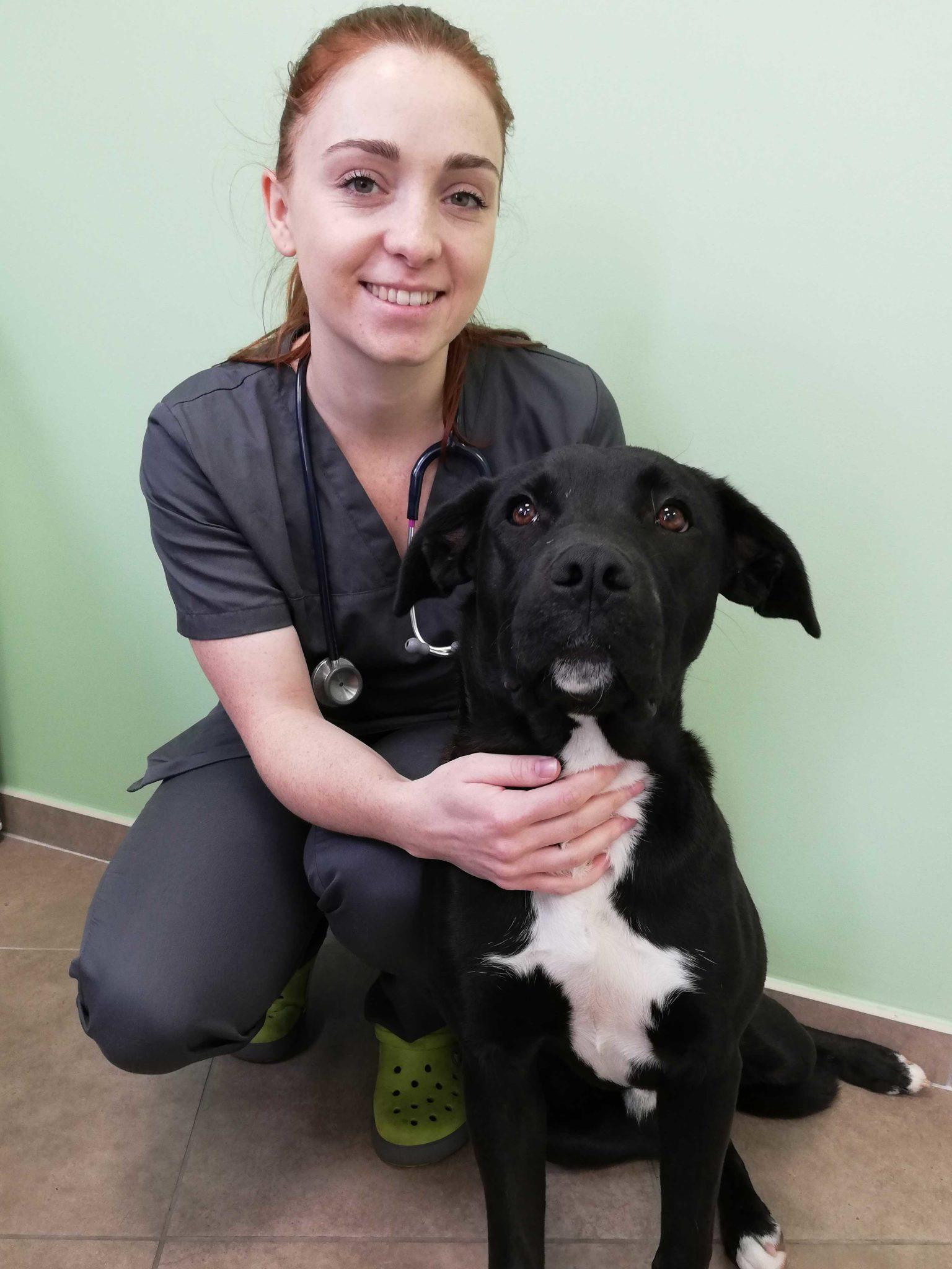 Clinique veterinaire passerelle givors grigny chasse sur rhone docteur mylene loire