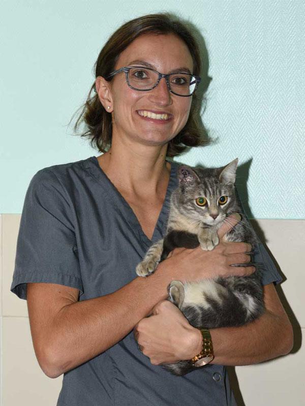 docteur clinique asv vétérinaire passerelle valérie bisch grigny givors chasse sur rhone urgence animal